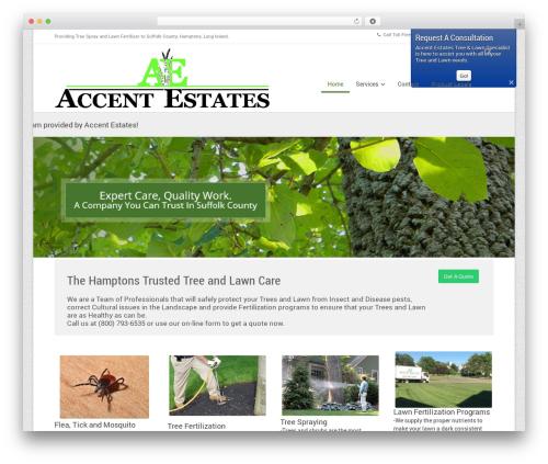 Souffle WordPress theme - aetreeexperts.com