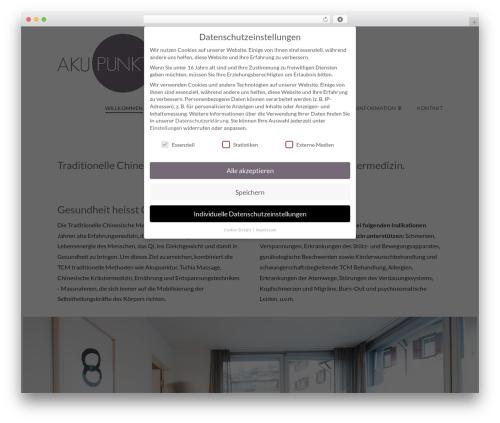 WordPress x-email-mailchimp plugin - akupunkt-zug.ch