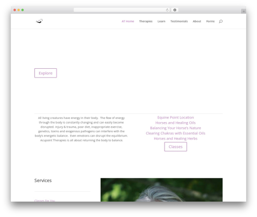 Divi WordPress page template - acupointtherapies.com