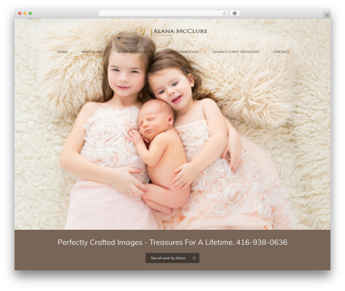 Free WordPress WordPress Calls to Action plugin - alanamcclurephotography.com