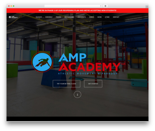 Movedo premium WordPress theme - ampacademygym.com