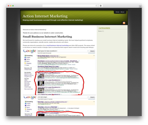 Affiliate Internet Marketing theme template WordPress - actioninternetmarketing.com