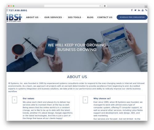 WordPress website template ibsi-us.com - ibsi-us.com
