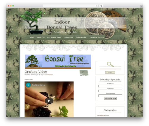 Dyne WordPress theme - indoorbonsaitreesforsale.com