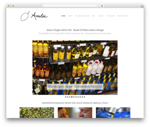 WordPress website template AmeliaOil - ameliaoil.com