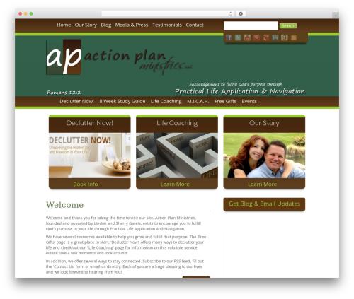 Free WordPress WP Hide Post plugin - actionplanministries.com