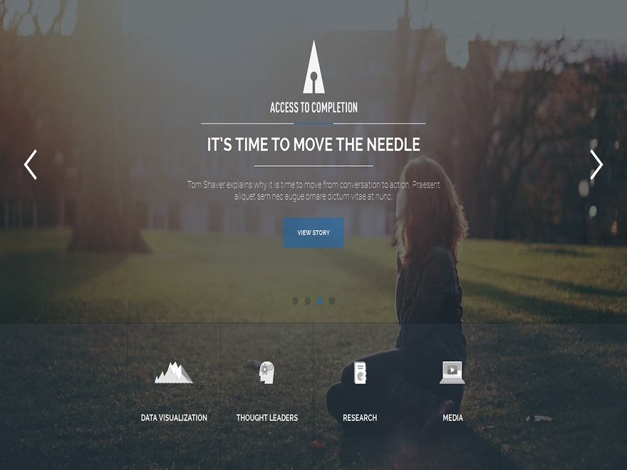 Adastra WordPress website template