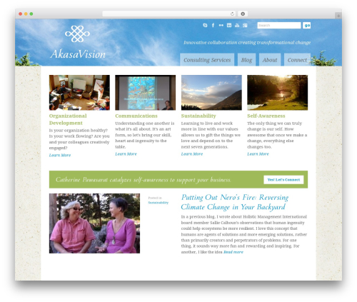 WordPress theme Goodspace - akasavisionconsulting.com