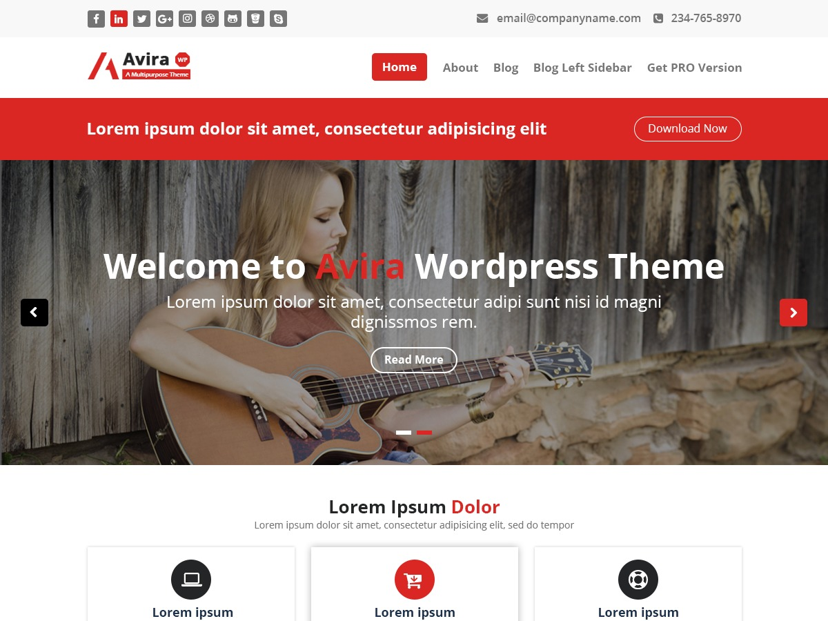 Avira WordPress free download