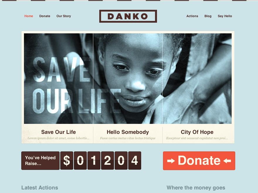 Danko premium WordPress theme