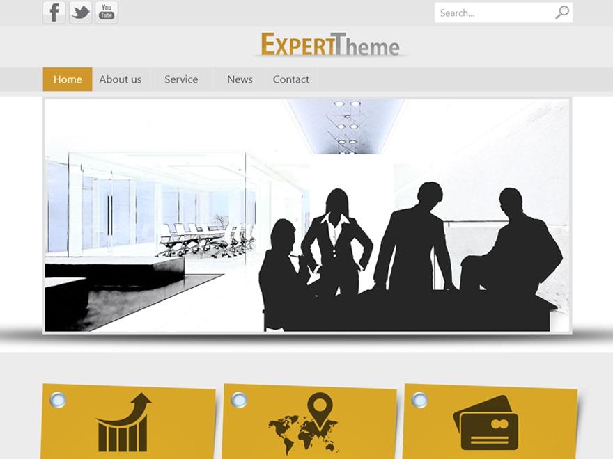 Expert WP theme