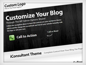 iConsultant Pro Theme WordPress template for business