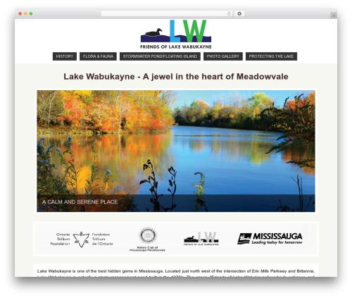 Parabola WordPress theme free download - wabukayne.com