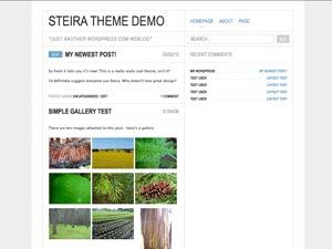 Steira WordPress theme design