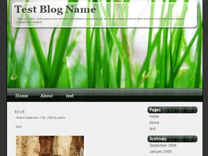 Vista-Like WordPress template for photographers
