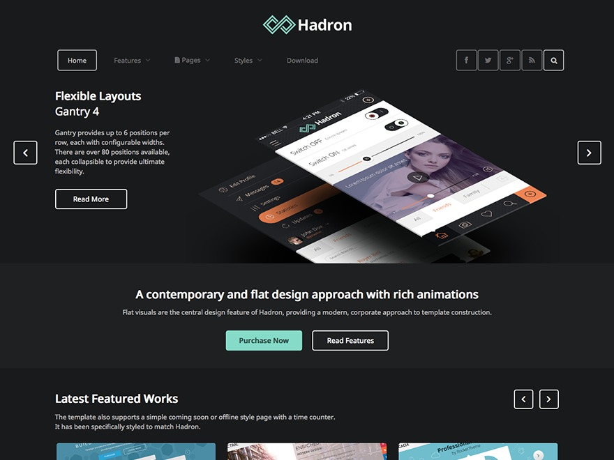WordPress theme Hadron