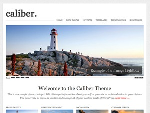 WordPress website template Caliber