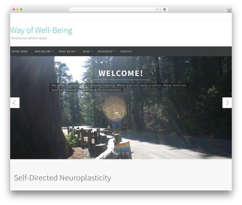 WordPress website template Nirvana - wayofwell-being.com