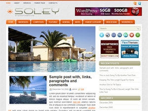 WP template Soley