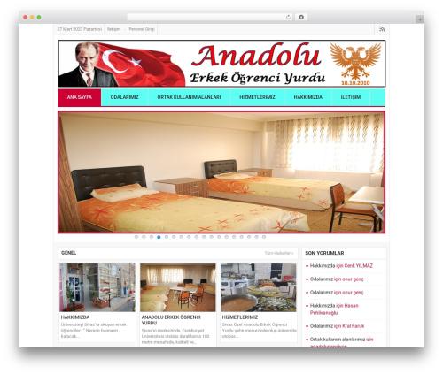 AnaNews Tr newspaper WordPress theme - anadolupansiyon.com