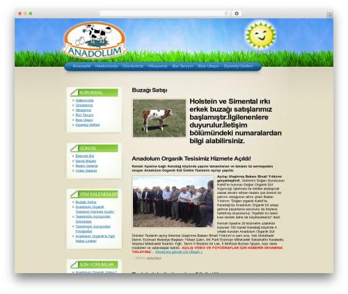 Arclite theme WordPress - anadolumorganik.com