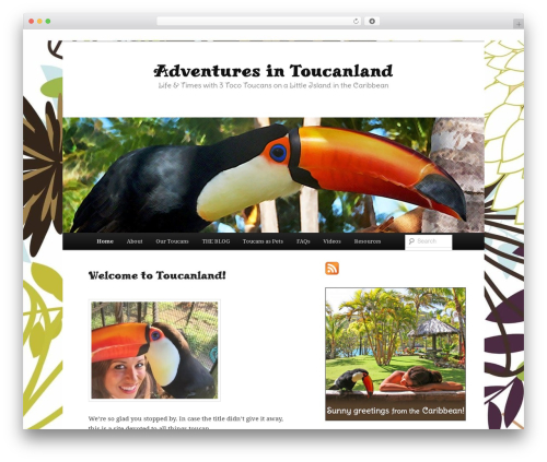 Free WordPress Twenty Eleven Theme Extensions plugin - adventuresintoucanland.com