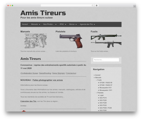 Gridiculous top WordPress theme - amistireurs.com