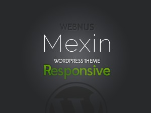 Mexin WordPress theme design
