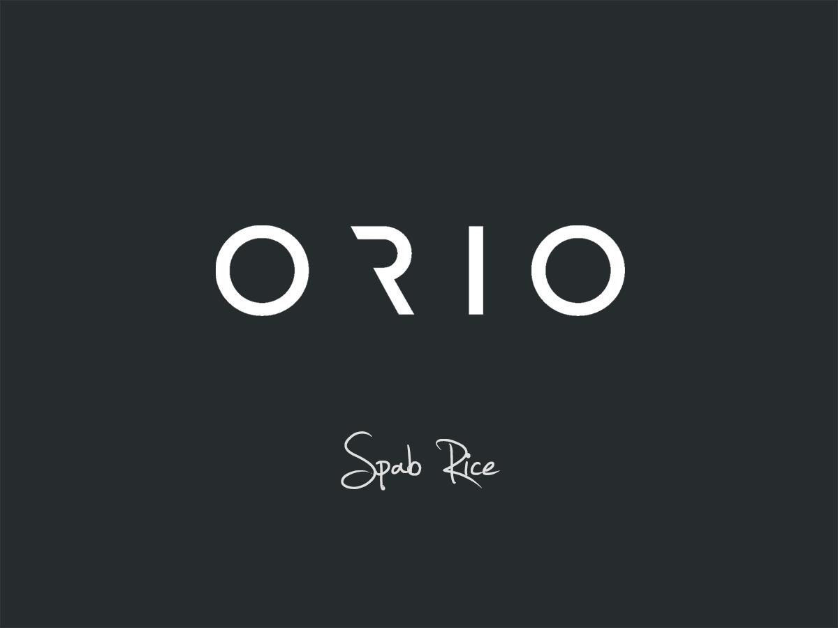 Orio best portfolio WordPress theme