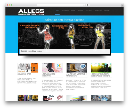Simplicity Lite best free WordPress theme - allegs.it