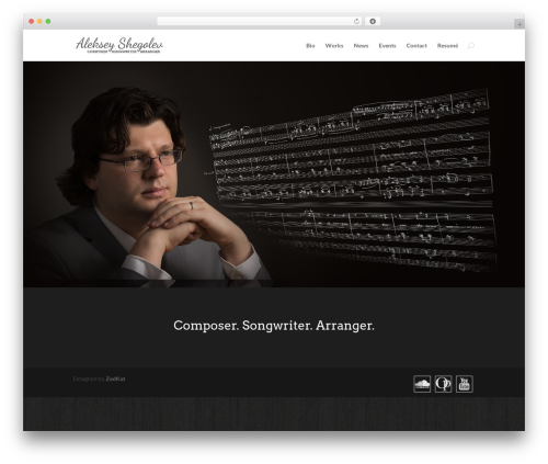 WordPress theme Divi - alekseyshegolev.com