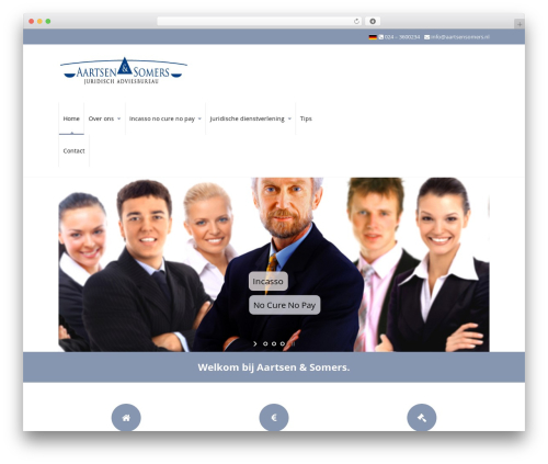 WP theme Pro Business - aartsensomers.nl