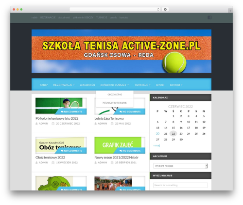 Reviewgine Affiliate WordPress free download - active-zone.pl