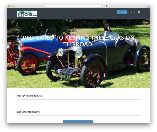 SQUARECODE-WP WordPress theme - amilcar.com.au
