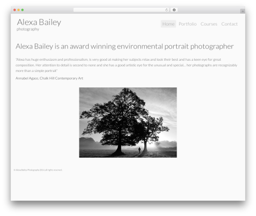 Template WordPress Alexa Bailey Custom Theme - alexabailey.com