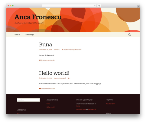 WordPress theme Twenty Thirteen - ancafronescu.com