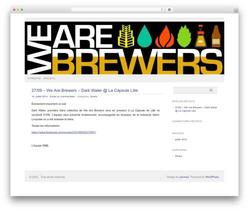 Best WordPress theme picolight - wearebrewers.com