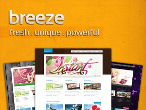 Breeze theme WordPress portfolio