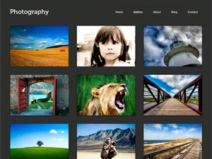 Photography PRO WordPress gallery theme