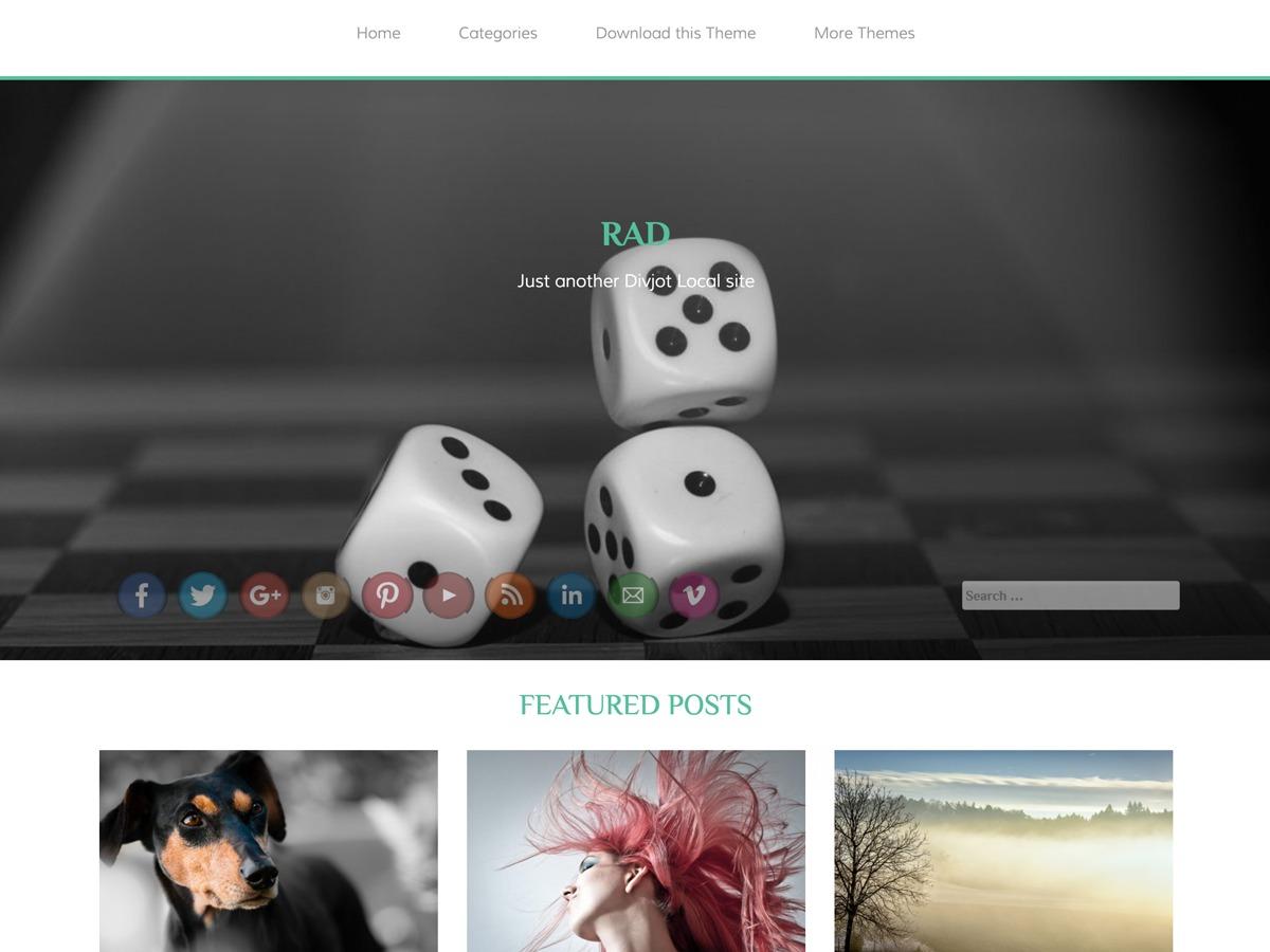 RAD free website theme