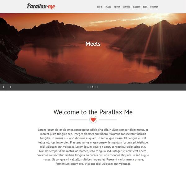 SKT Parallaxme Pro theme WordPress portfolio