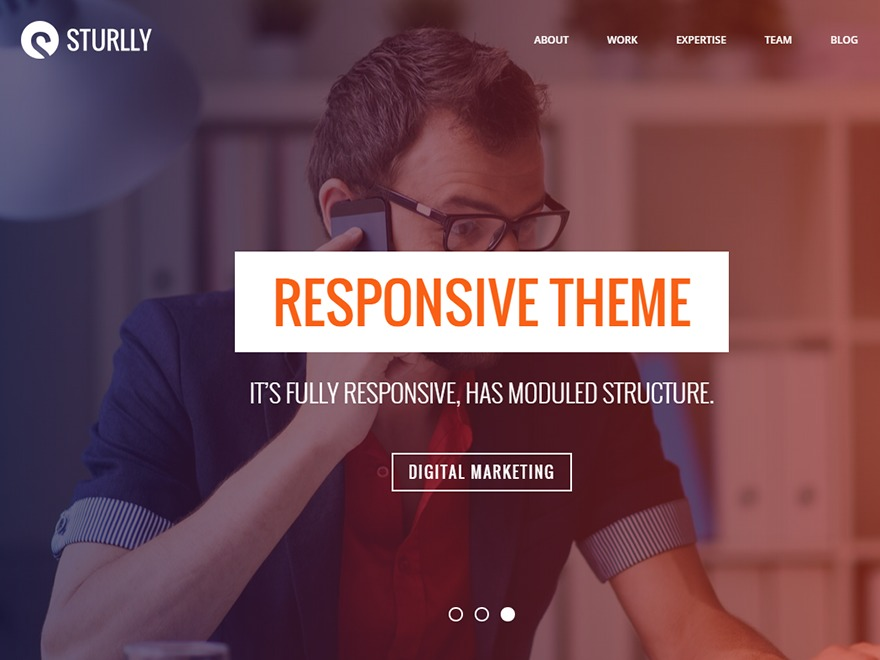 Sturlly WordPress theme