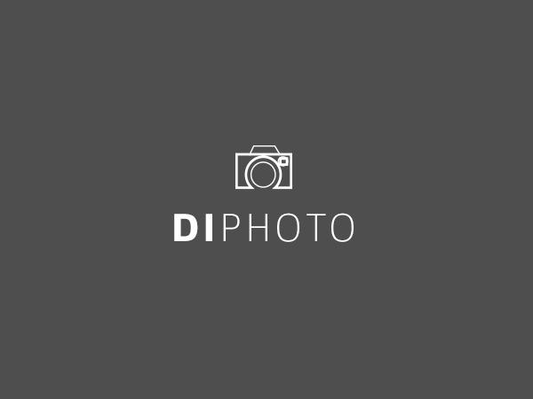 Theme WordPress DI Photo