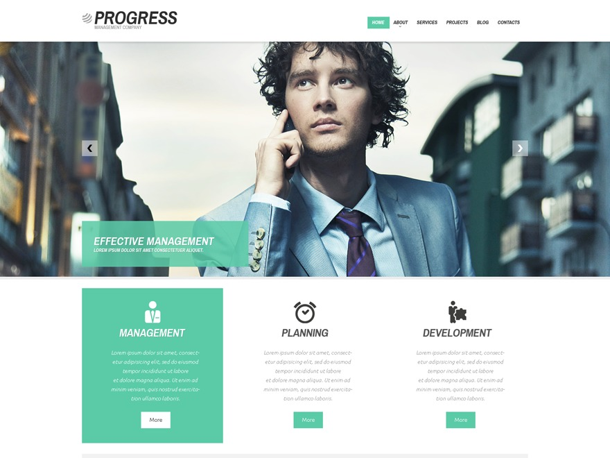 theme48245 top WordPress theme