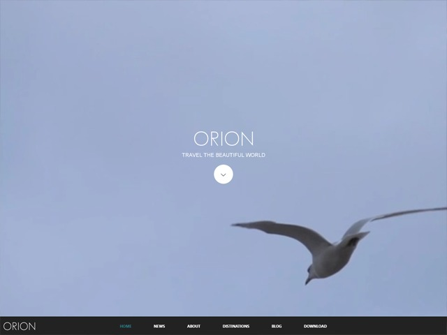 WordPress template ORION
