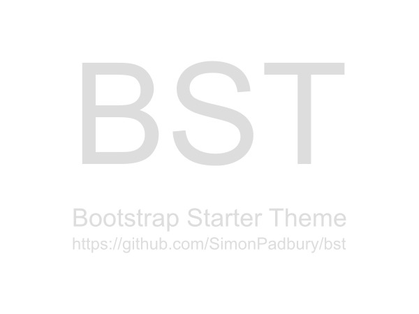 WordPress theme BST