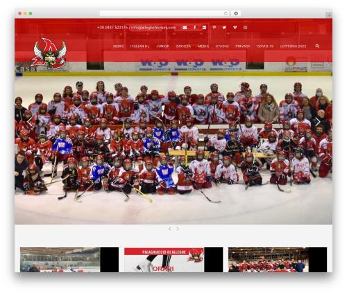 BigSlam template WordPress - alleghehockey.com