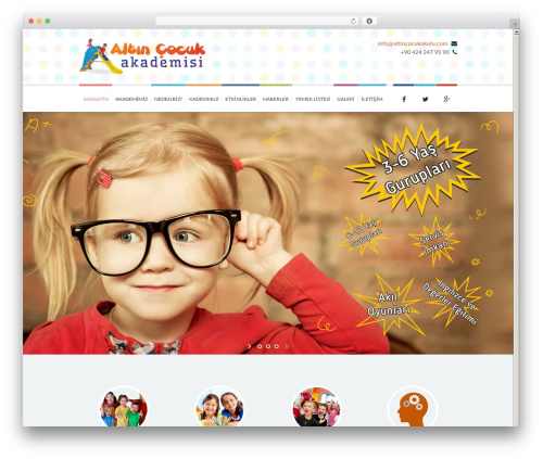 Kidslife best WordPress theme - altincocukokulu.com