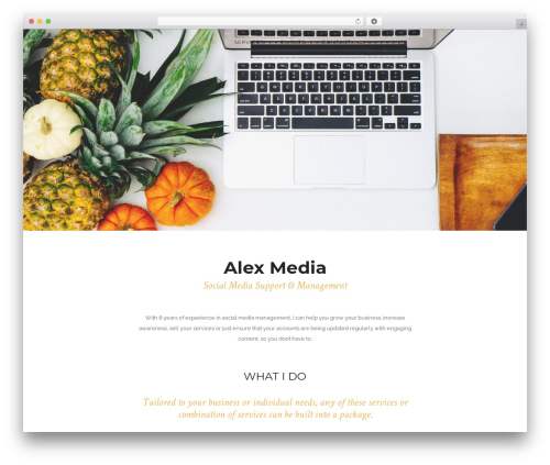 am WordPress template - alexmedia.co.uk
