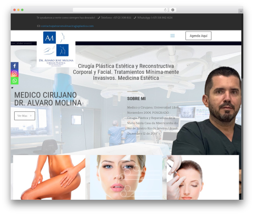 Free WordPress Snazzy Maps plugin - alvaromolinacirugiaplastica.com